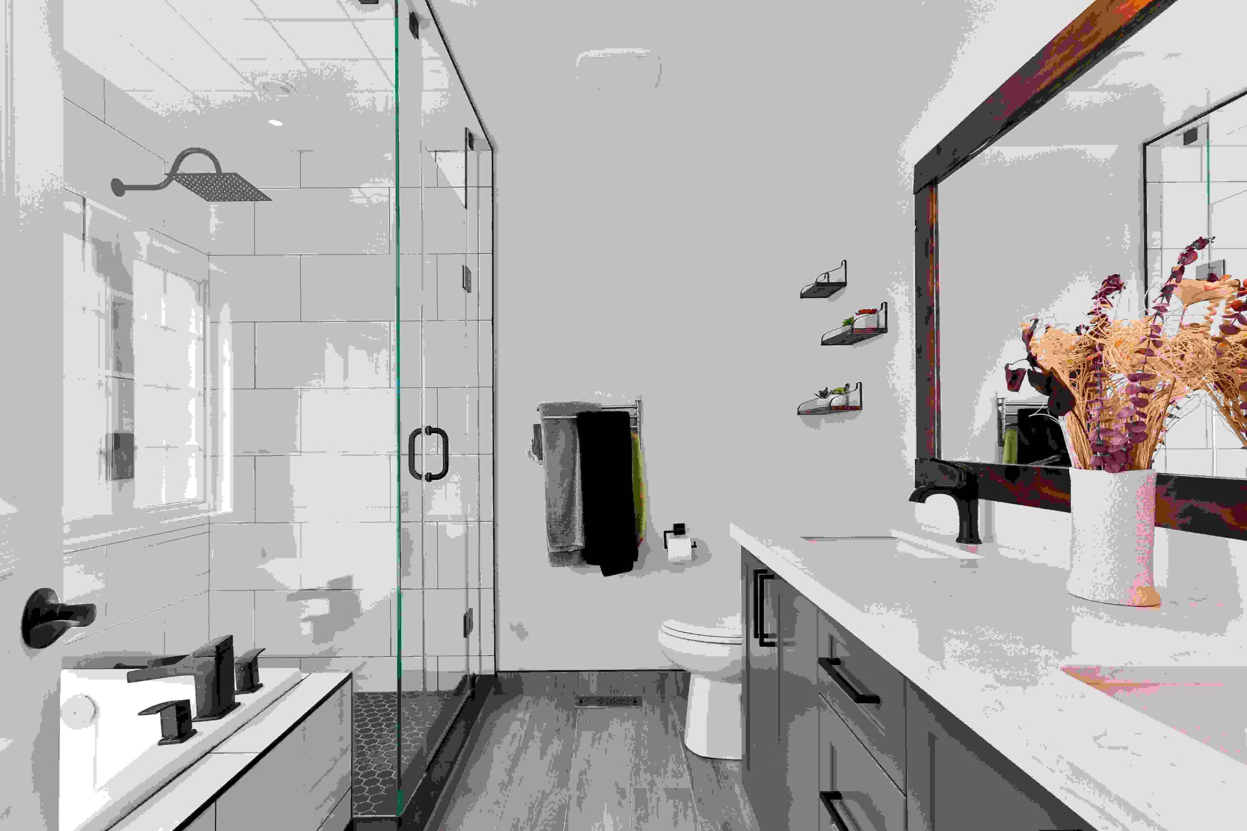 shower plumber repairs